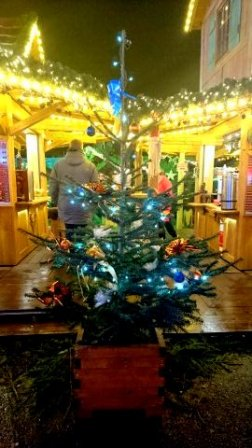 Christmas tree at the Rostock christmas market